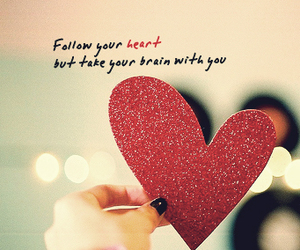 brain, follow, and heart image