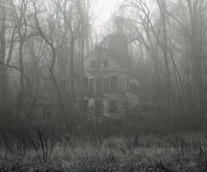 creepy, fog, and house image