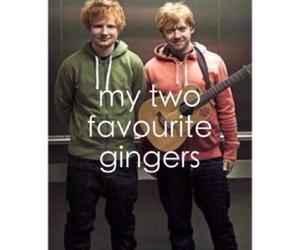 ed sheeran, ginger, and rupert grint image