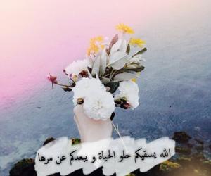 عربي, ورد, and تصاميم image