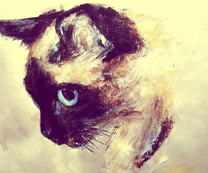 disegni, siamese, and acrylic animal art image