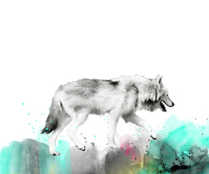 animals, painting, and wolf image