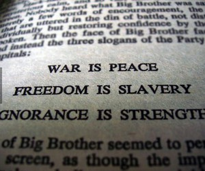 freedom, peace, and war image