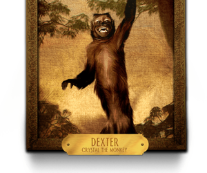 Dexter, night at the museum 3, and crystal the monkey image