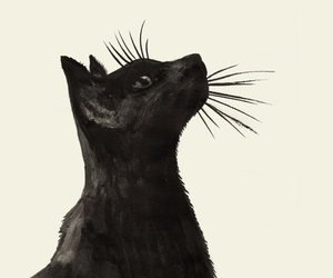 drawing and black cat image