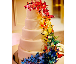 cake, butterfly, and rainbow image