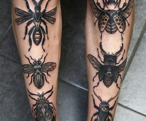 tattoo, insect, and bug image