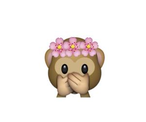 flowers, monkey, and whatsapp image