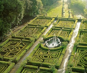 garden, green, and maze image