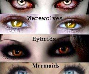 vampire, hybrid, and mermaid image