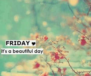 friday and day image