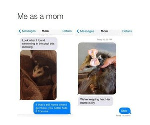 funny and mom image
