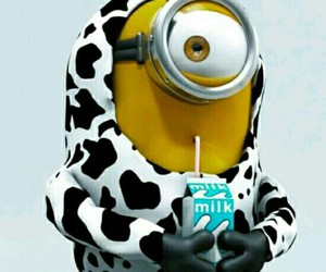 minions and milk image