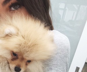 dog, madison beer, and cute image
