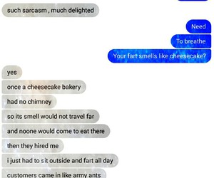 cheesecake, funny, and text image