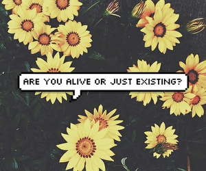 alive, flowers, and existing image