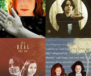 severus snape and lily potter image