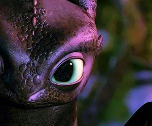 toothless, dragon, and dreamworks image