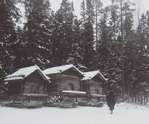 landscape, snow, and wood image