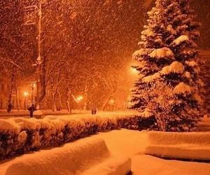 picturesque image
