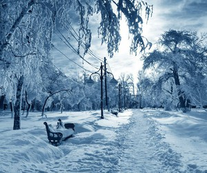 life, winter, and snow image