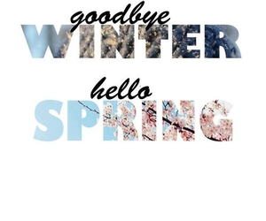 spring, winter, and hello image