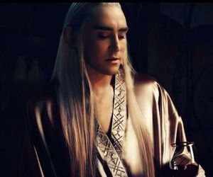 elf, sexy, and thranduil image
