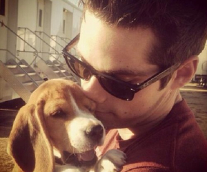 dylan o'brien, teen wolf, and dog image