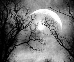 black and white, dark art, and moon image