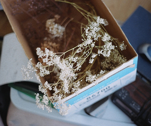 flowers, vintage, and box image