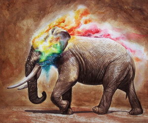 color and elephant image