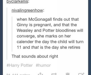 book, funny, and harry potter image