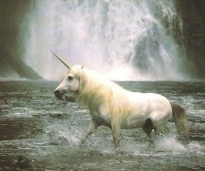 unicorn, waterfall, and horse image