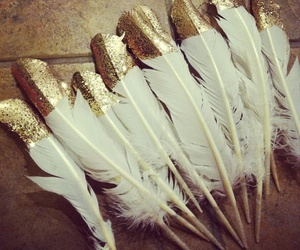 feather, gold, and white image