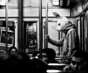 black and white, rabbit, and alone image