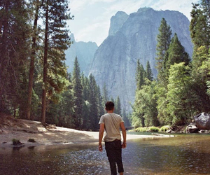nature, boy, and forest image