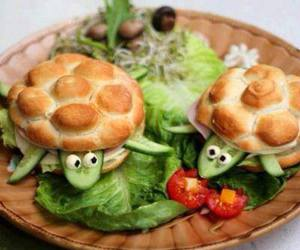 food, turtle, and salad image