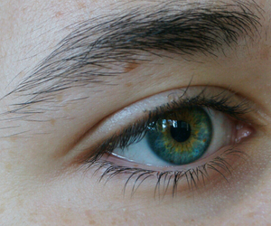 eye, green, and eyes image