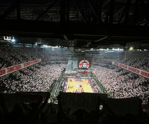Basketball, Belgrade, and red star image