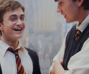 harry potter, daniel radcliffe, and neville longbottom image