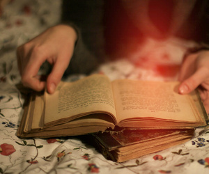 bed, book, and hands image