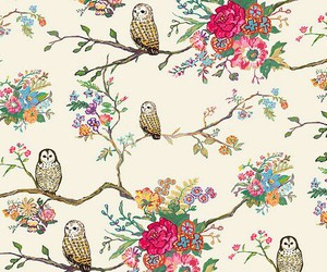 owl, flowers, and background image