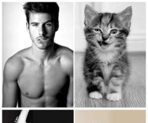 cat, boy, and funny image