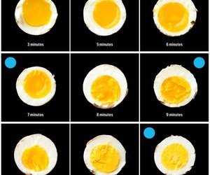 egg, food, and recipe image