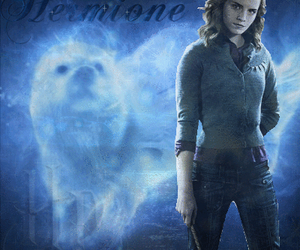 harry potter and hermine granger image