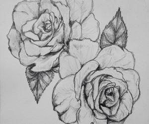 drawing, flowers, and pretty image