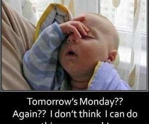 monday, baby, and funny image