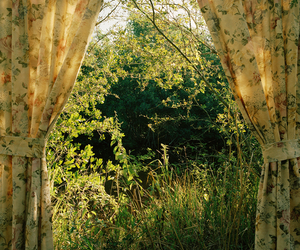 nature, vintage, and green image