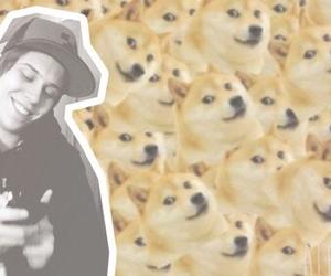 doge, ust, and youtube image