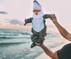 baby, cute, and shark image